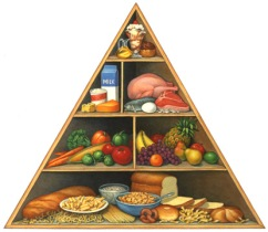 photo of food pyramid